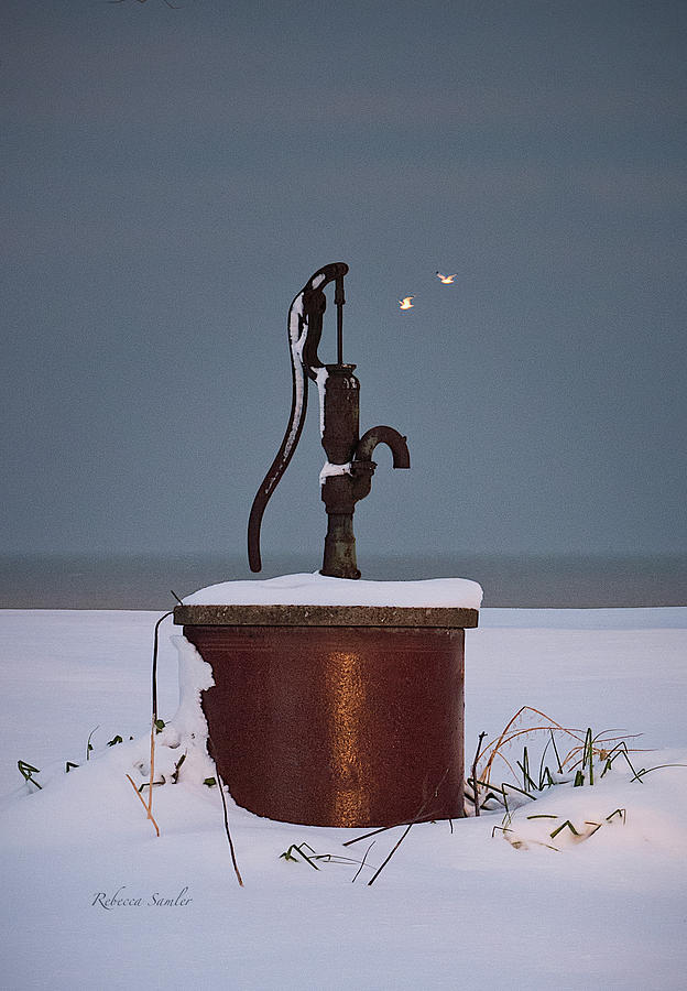 The Pump by Rebecca Samler