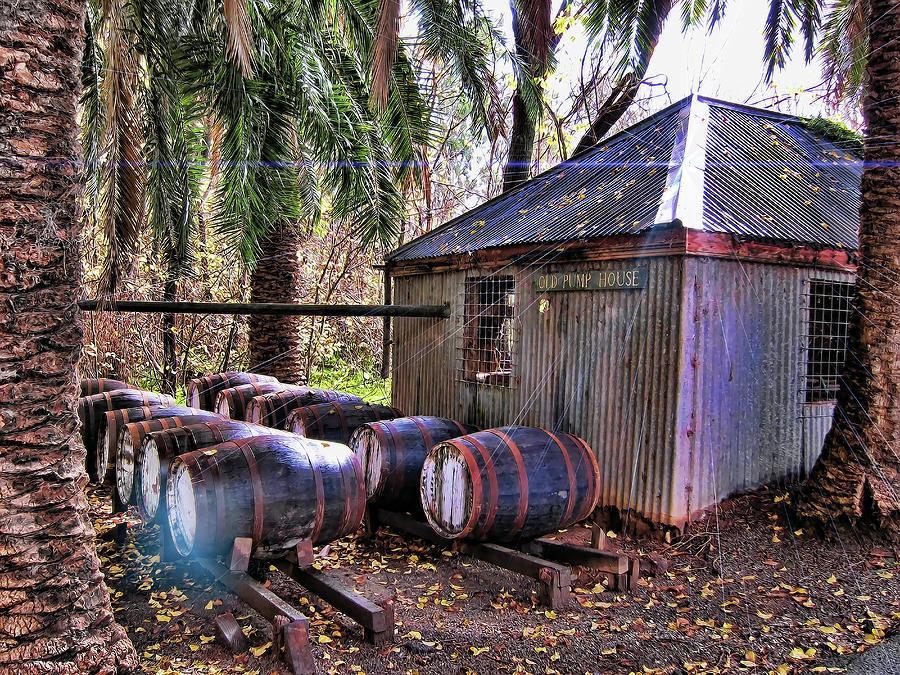Shed Photograph - The Pumphouse by Douglas Barnard