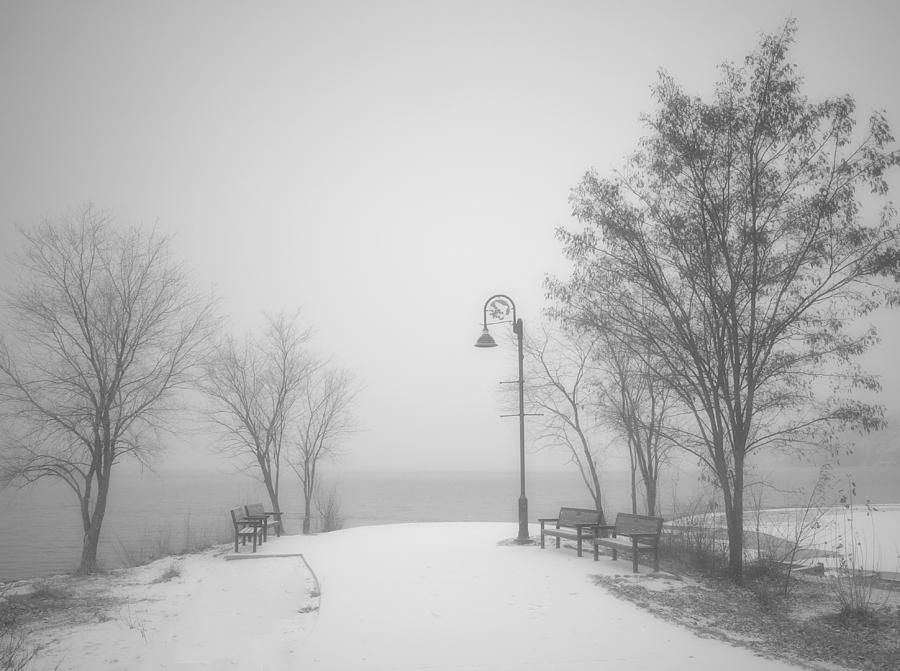Snow Photograph - The Quiet Moment Before Snow Touches Ground by Tara Turner