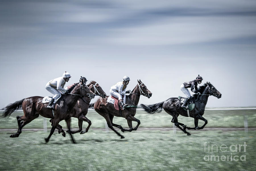 The Race Is On Photograph