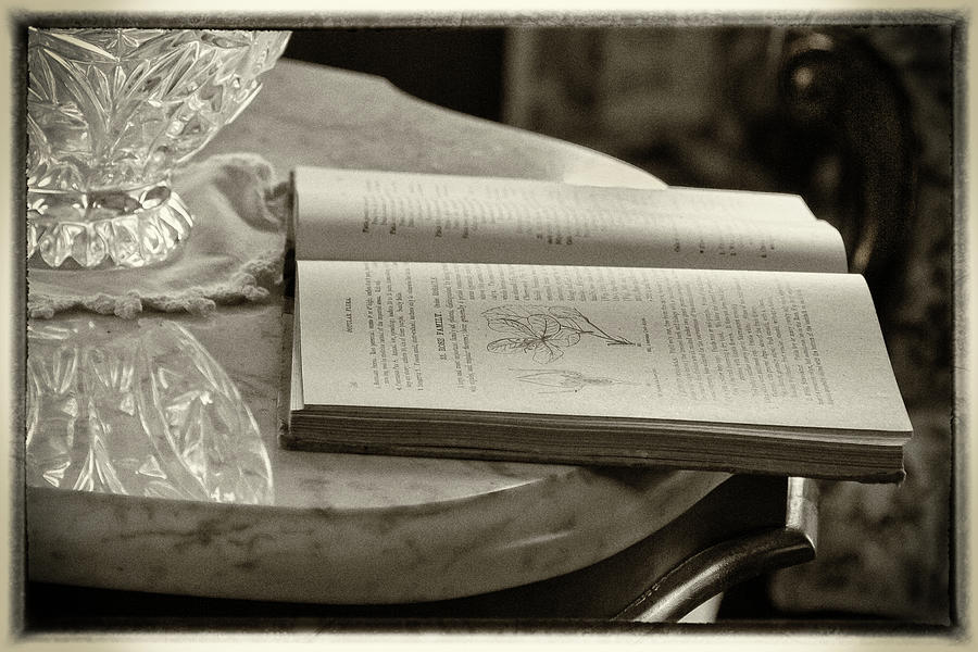 The Reading Table Photograph