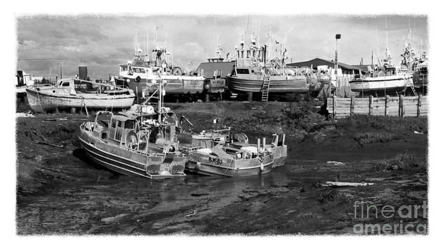 Alaska Photograph - The Real Alaska - Caught At Low Tide by Pete Hellmann