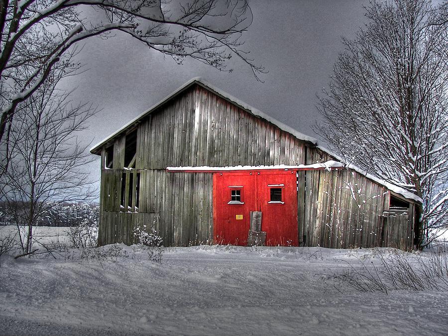 Door Photograph - The Red Door by Maria Dryfhout