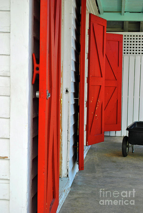 Red Photograph - The Red Doors by Jost Houk