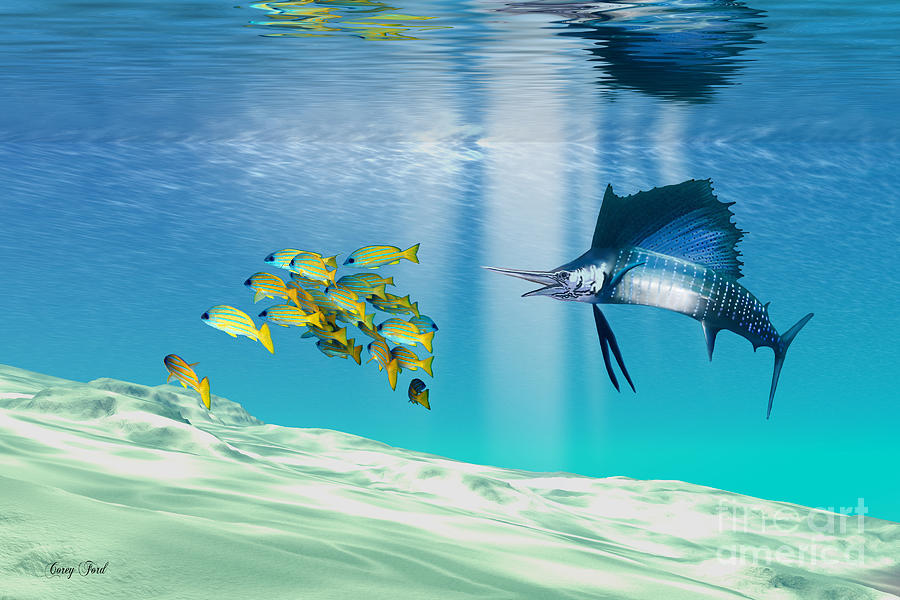 Sailfish Painting - The Reef by Corey Ford