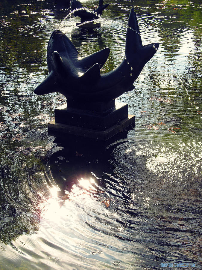 Sculpture Photograph - The Reflecting Pool by Garth Glazier