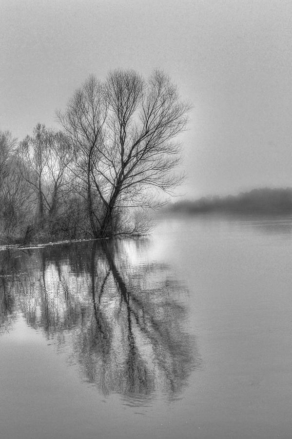 Swamp Photograph - The Reflections by Ester McGuire