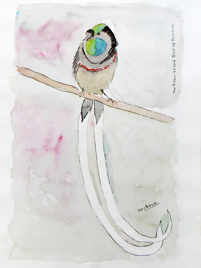 The Ribbon Tailed Bird Of Paradise Painting