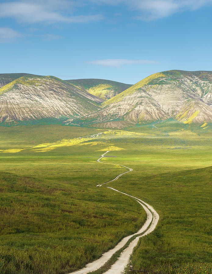 Carrizo Plain Photograph - The Road Down by Joseph Smith