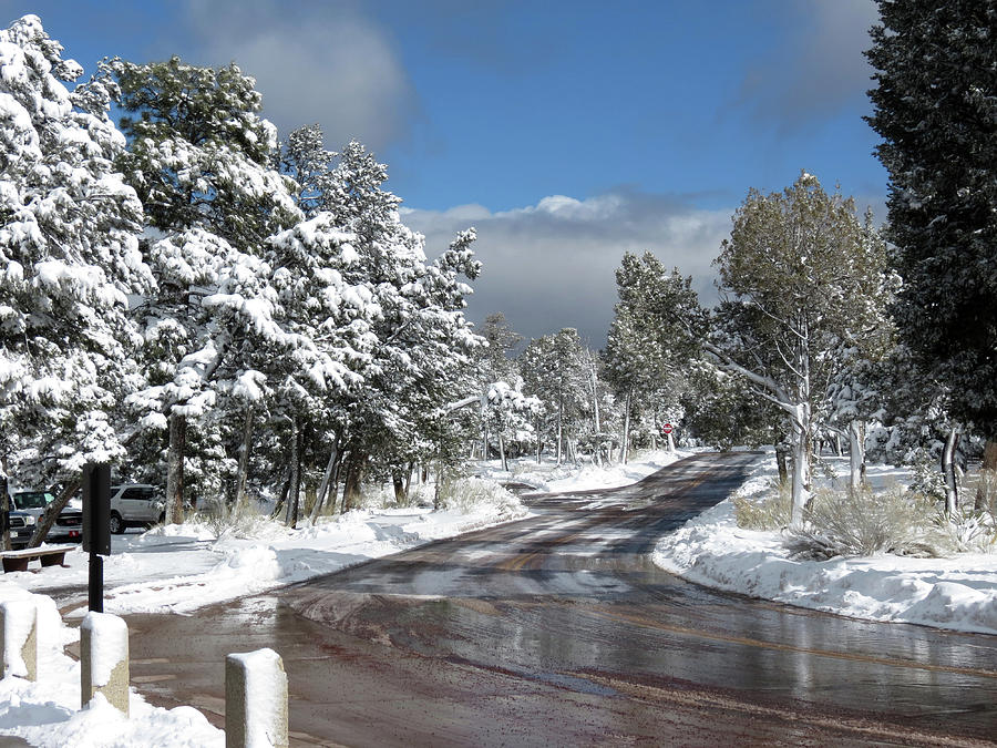 Road Photograph - The Road Through Winter by Laurel Powell