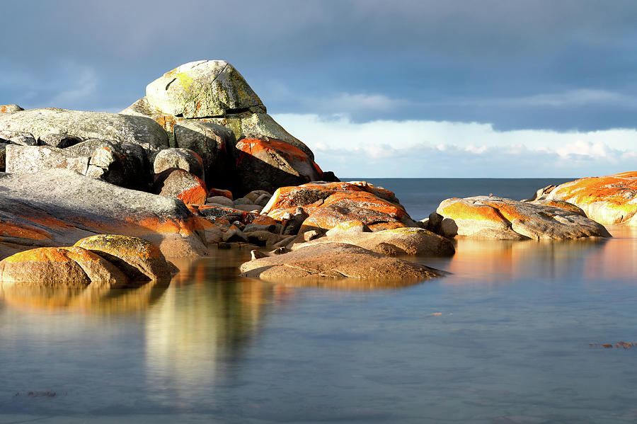 The Rocks and the Water by Nicholas Blackwell