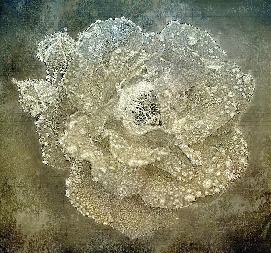Rose Digital Art - The Rose by Andrea Swiedler