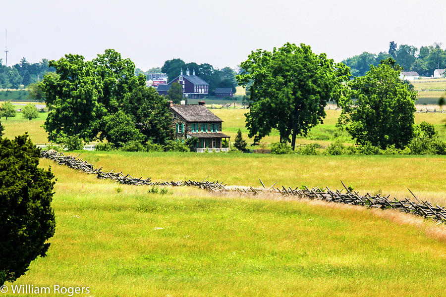 The Rose Farm Photograph by William Rogers