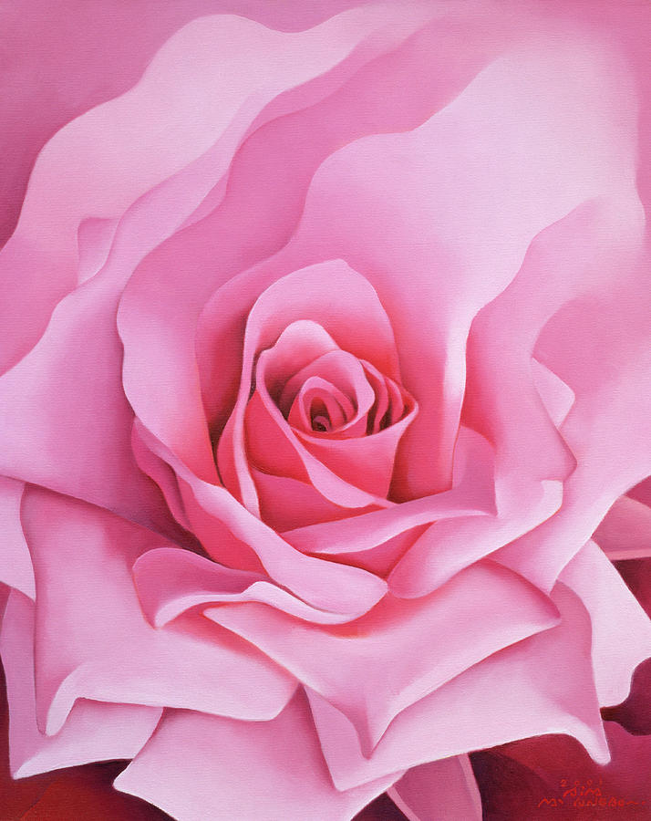 Pink; Flower; Petals; Large; Close-up; Rose Painting - The Rose by Myung-Bo Sim