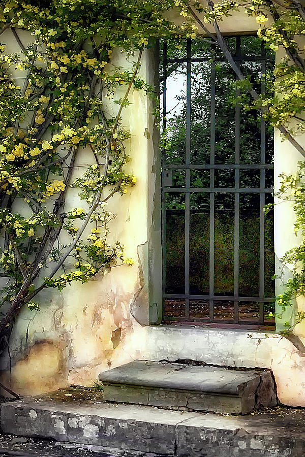 Italy Photograph - The Rose Vined Door by Lynn Andrews
