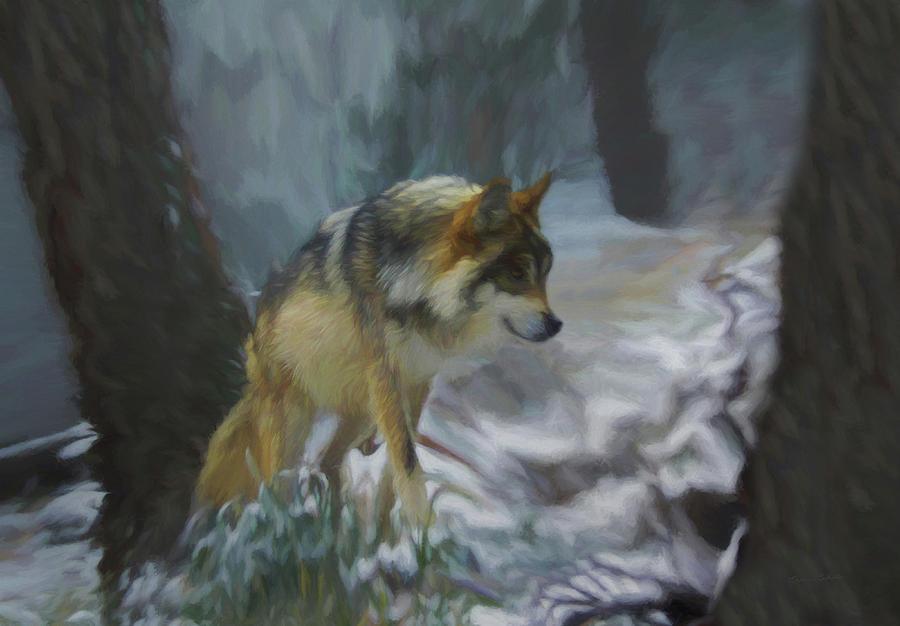 Wolf Digital Art - The Searching Wolf by Ernie Echols