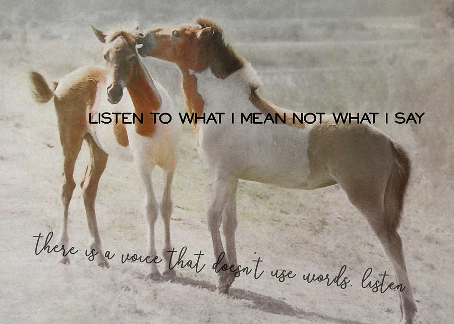Horse Photograph - The Secret Quote by JAMART Photography