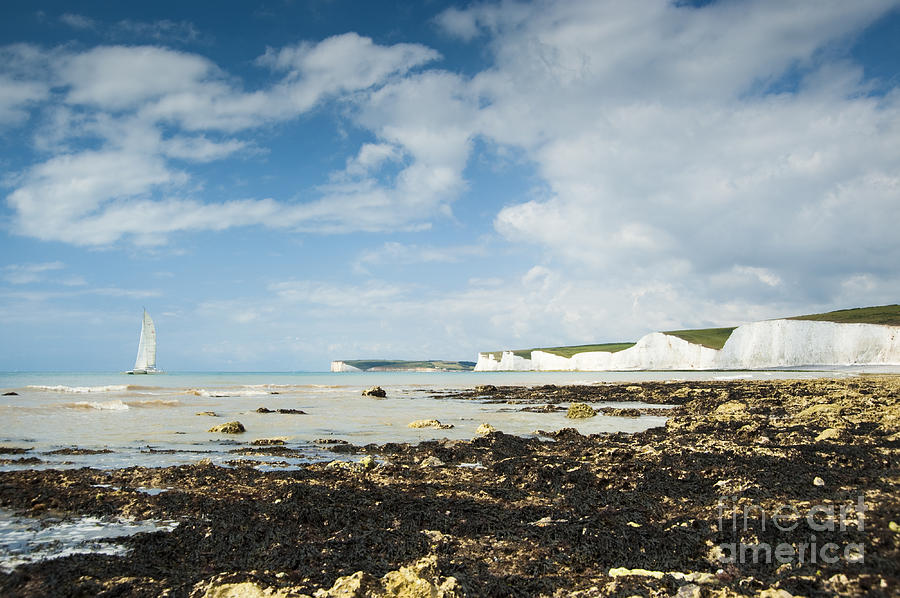 East Sussex Photograph - The Seven Sisters by Donald Davis