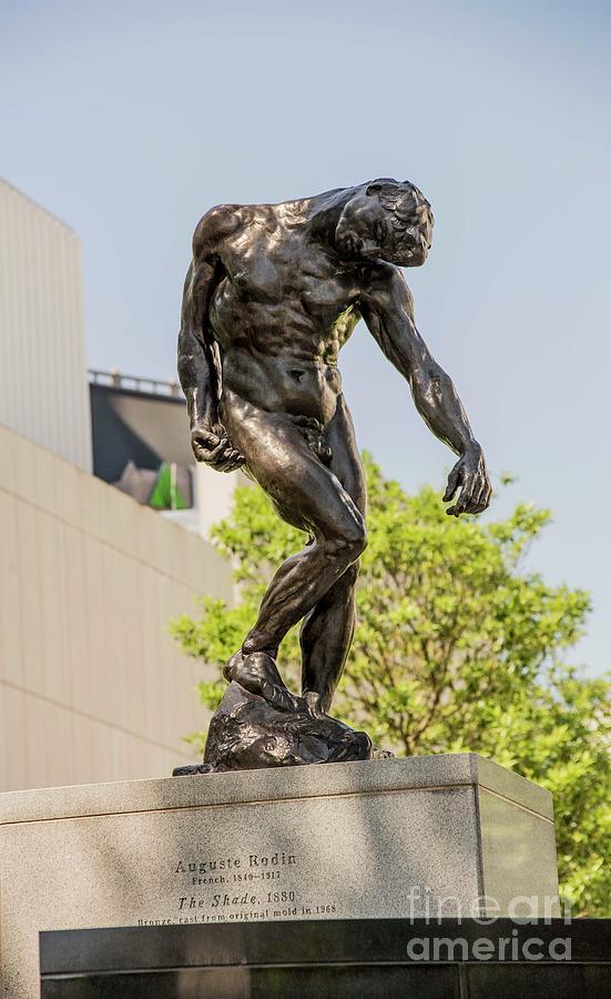The Shade Rodin Photograph By David Bearden