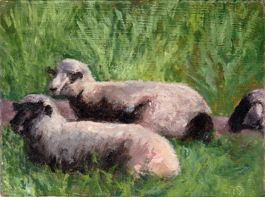 Animals Painting - The Sheep Are Resting by Chris Neil Smith