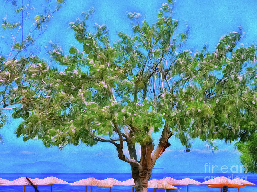Tree Photograph - The Smiling Tree Of Benitses by Leigh Kemp