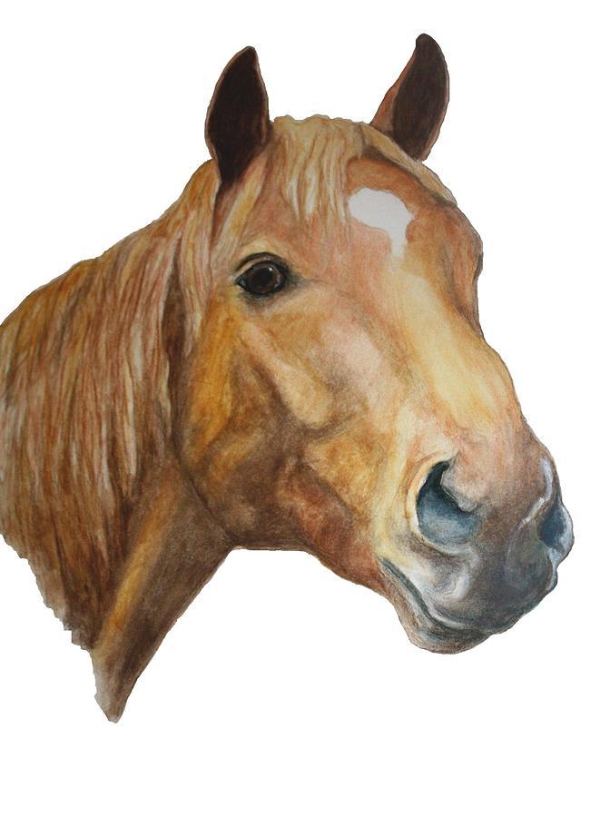 Chestnut Painting - The Sorrell by Debra Sandstrom