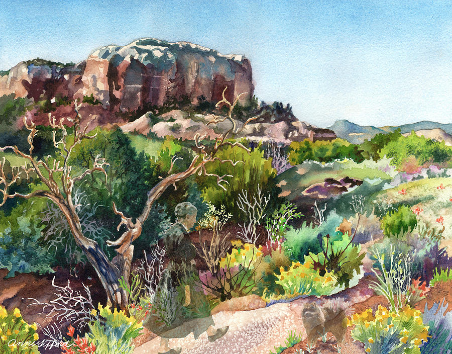 The Spirit of Ghost Ranch by Anne Gifford
