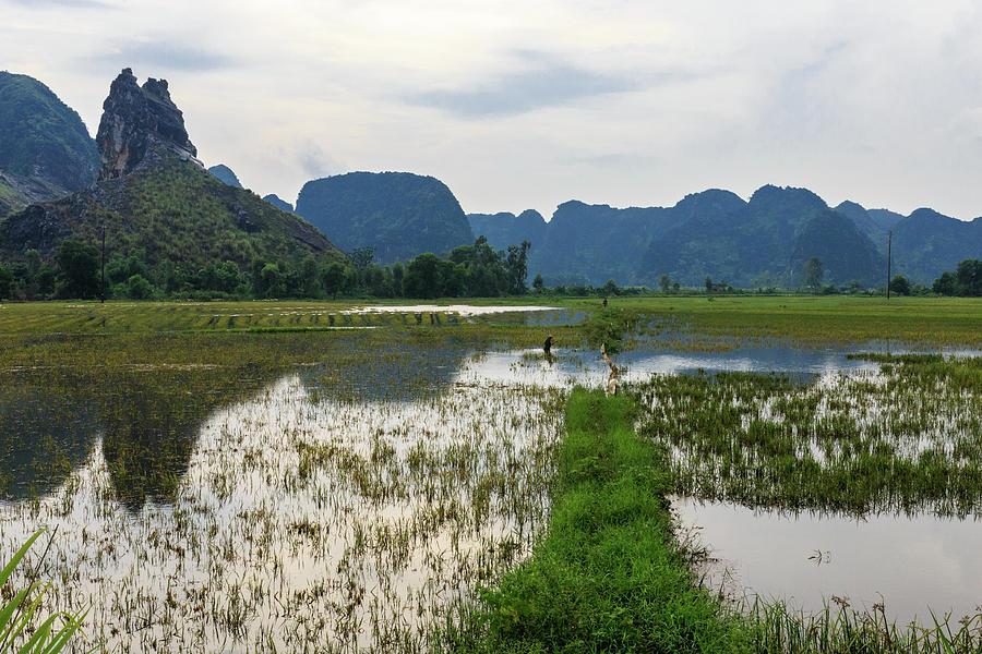 The Spirit of Ninh Binh 4 by Sam Morris