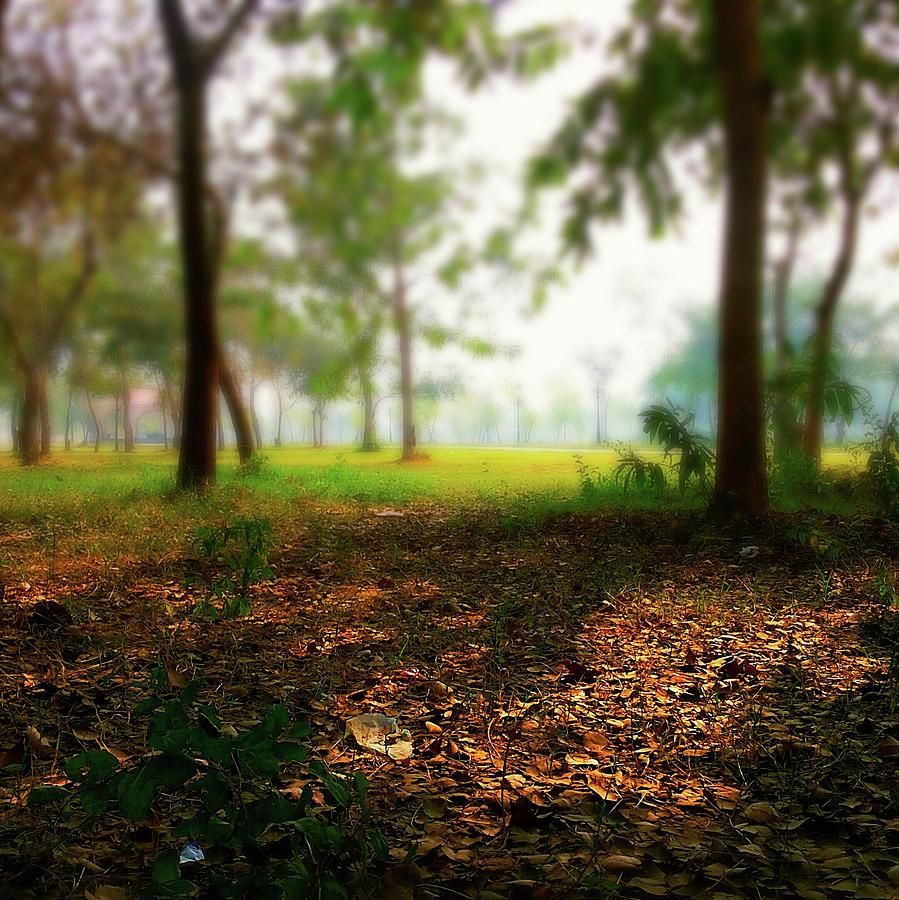 City Photograph - The Spot by Atullya N Srivastava