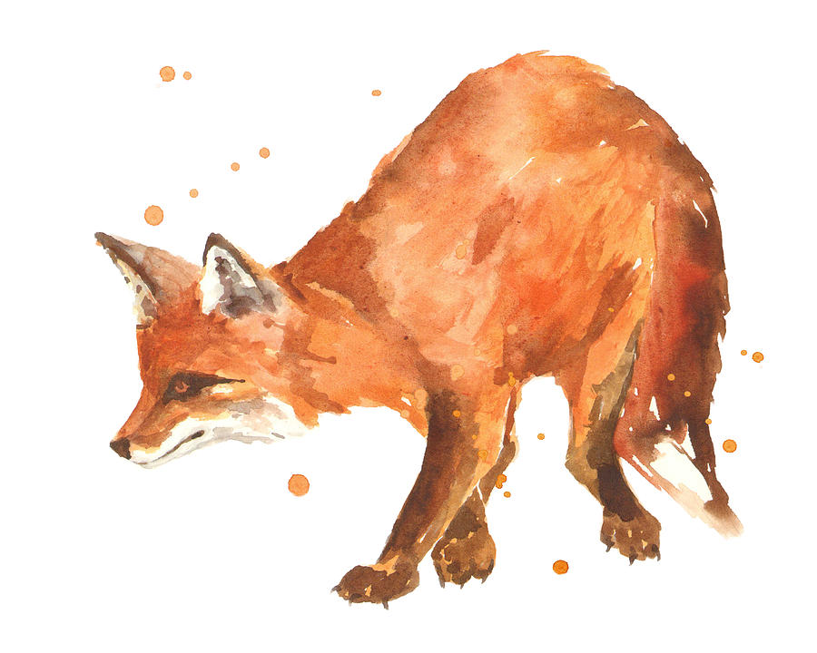 Fox Painting - The Stalker by Alison Fennell