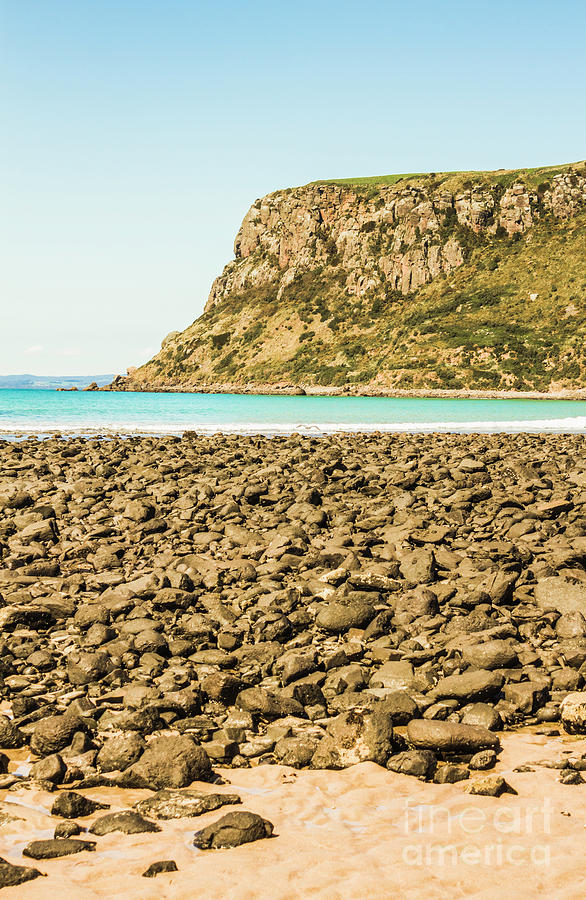 Beach Photograph - The Stanley Nut by Jorgo Photography - Wall Art Gallery