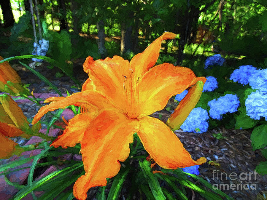 The Star of the Garden by Sue Melvin