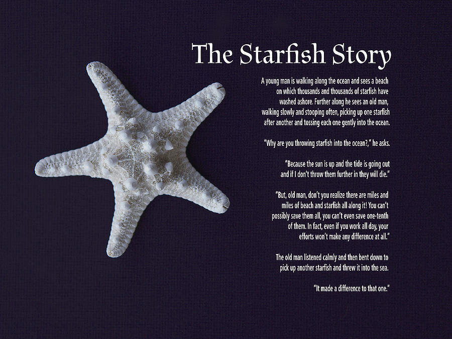 The starfish story photograph by lori werhane for Star fish story