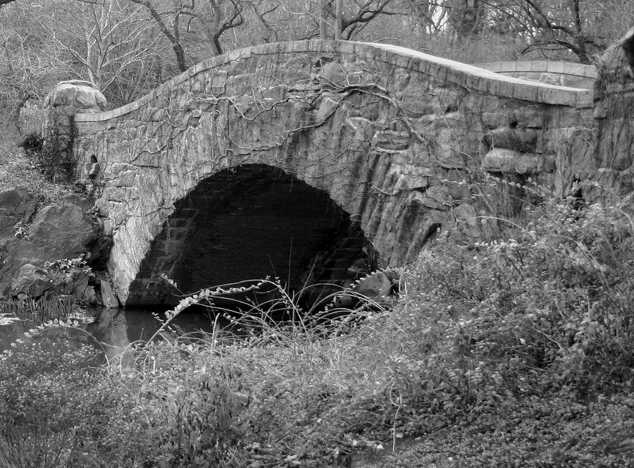 Bridge Photograph - The Stone Bridge by Dennis Curry