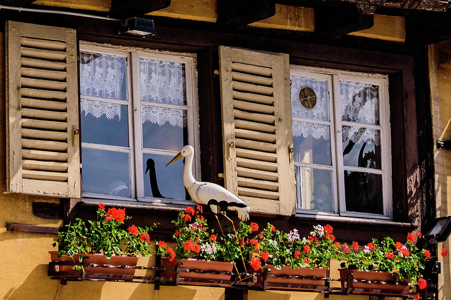 Stork Photograph - The Stork Has A Delivery - Colmar France by Jon Berghoff