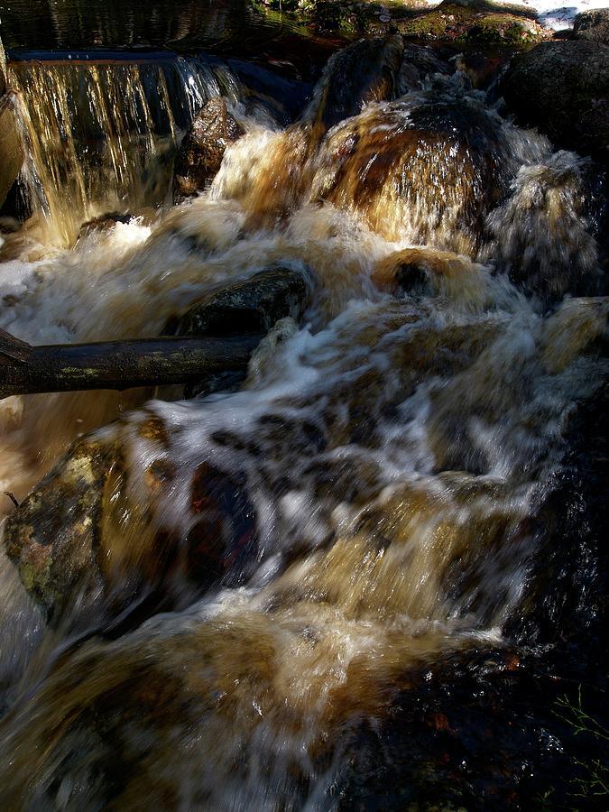 Nature Photograph - The Stream 1 by Jouko Lehto