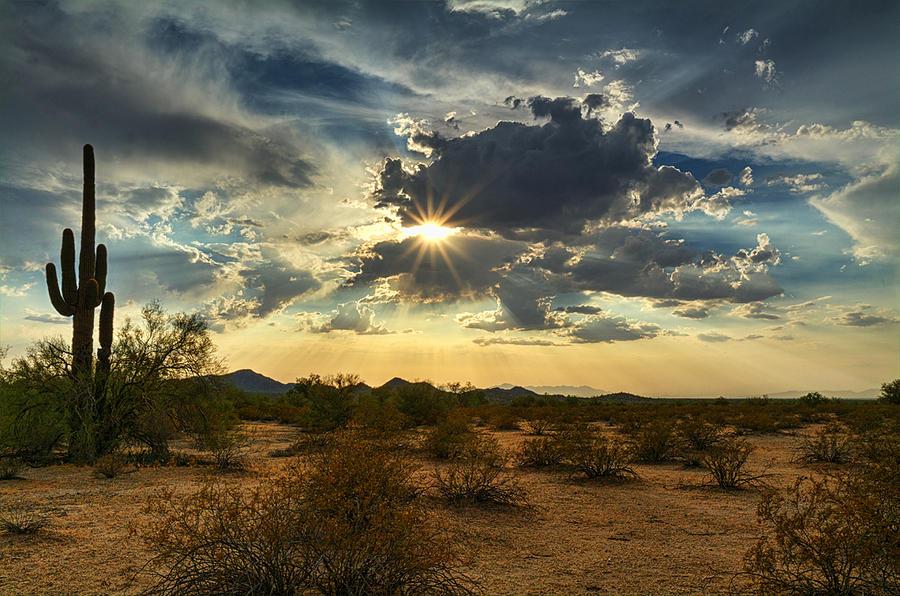 Desert Sun Wallpapers | HD Wallpapers | ID #15785
