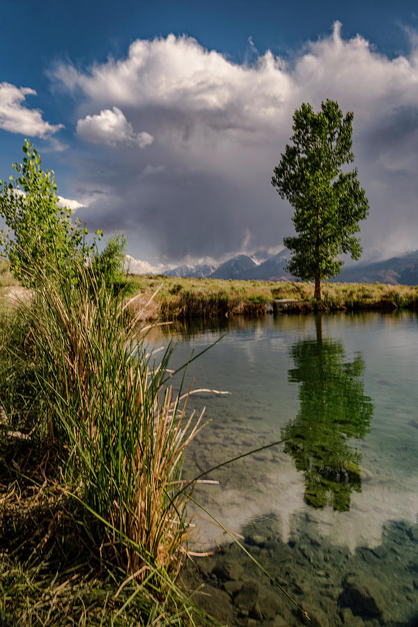 Lake Photograph - The Swimming Hole by Cat Connor