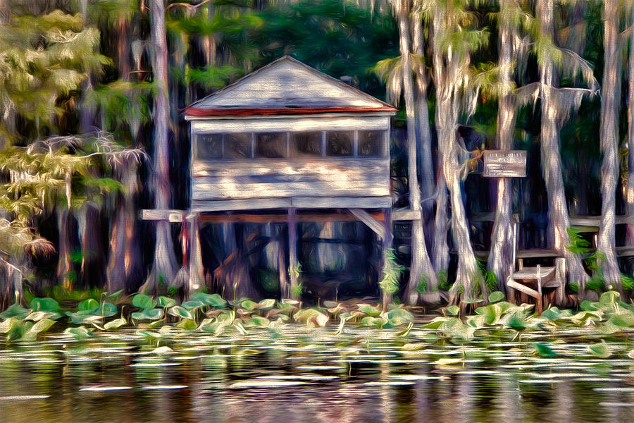 bald Cypress Photograph - The Tea Room by Lana Trussell