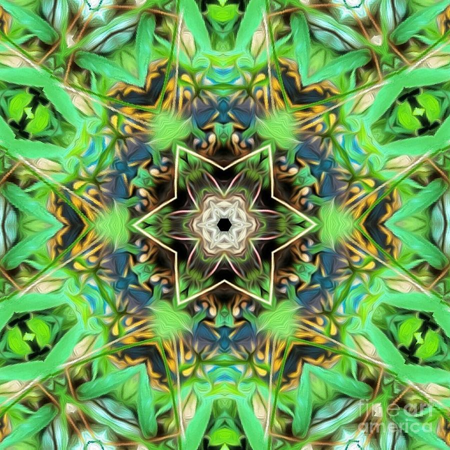 Turtle Digital Art - The Terrapin Star by Josie Baldwin