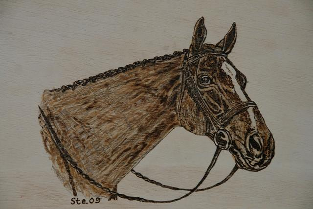 Landscape Pyrography - The Thoroughbred by Steven Steven