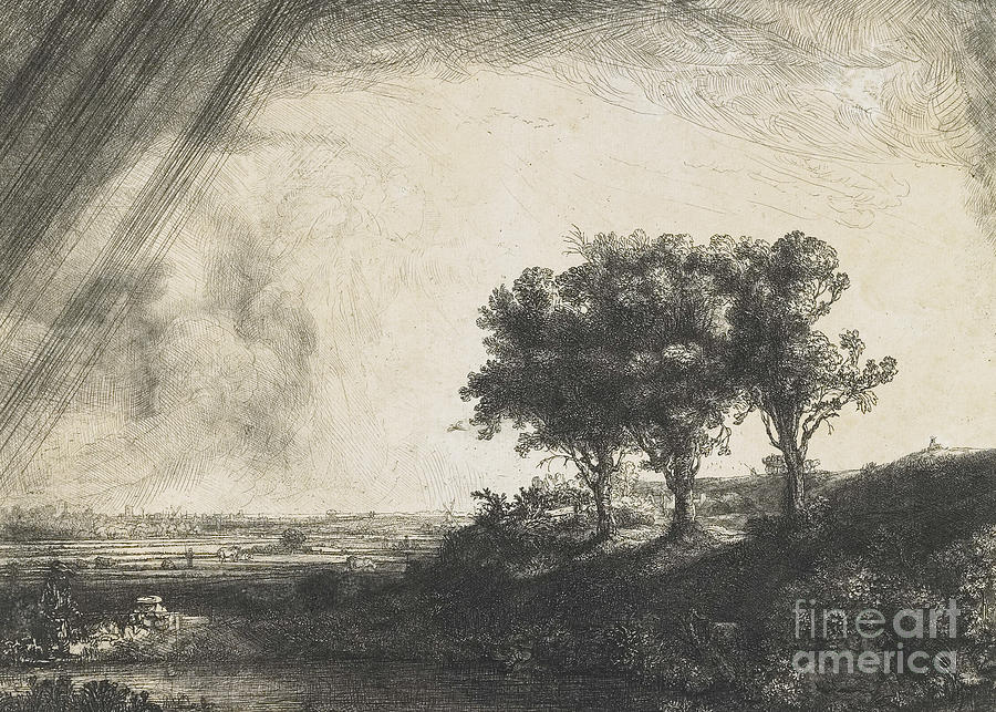 Rembrandt Drawing - The Three Trees by Rembrandt