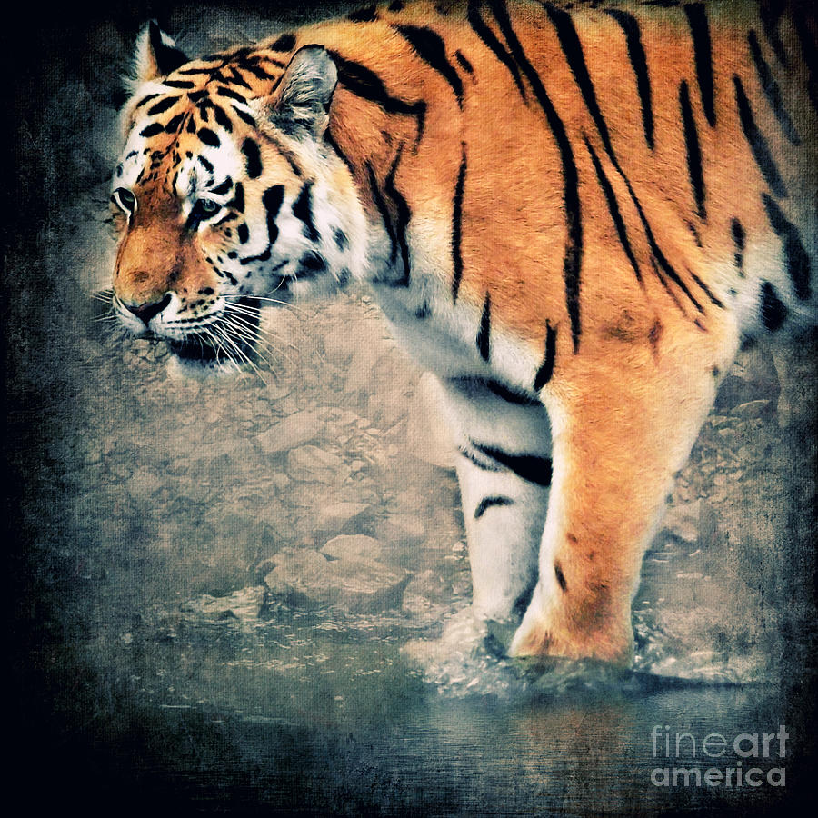 Texture Digital Art - The Tiger by Angela Doelling AD DESIGN Photo and PhotoArt