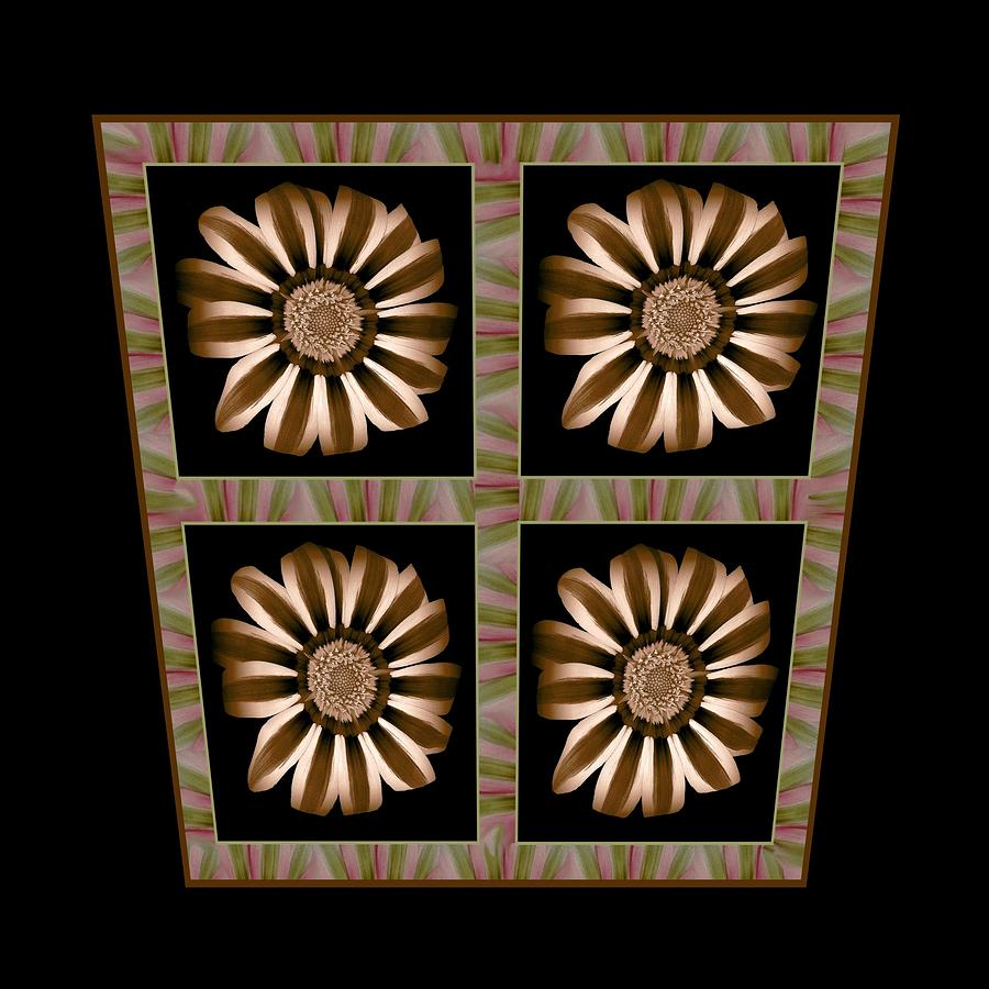 Sepia Brown Flower Striped Transformation Floral Nature Growth Meditation Spiritual Mixed Media - The Transformation Of Flower 2 - Realignment by Jacqueline Migell