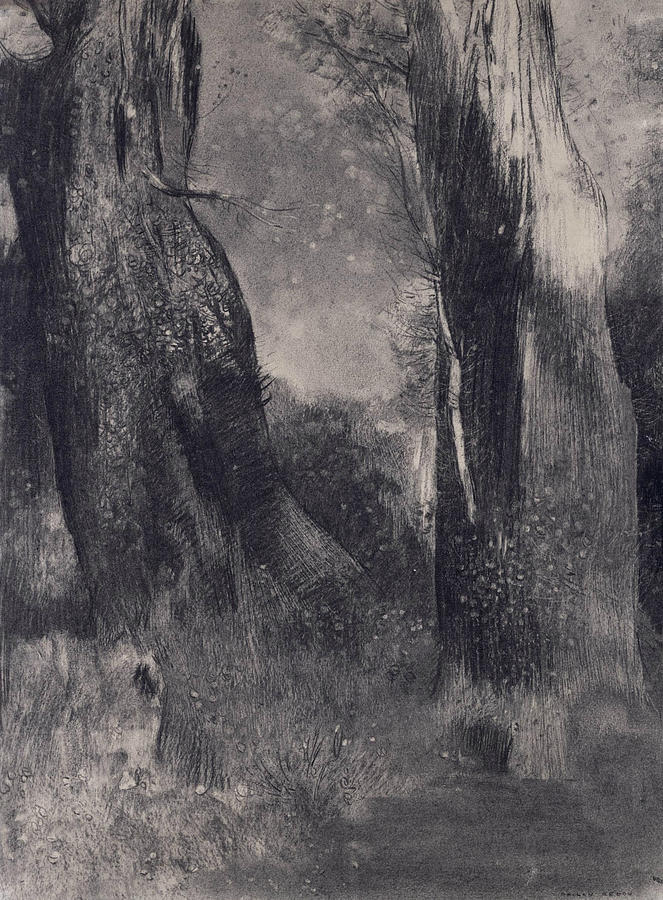 French Artists Drawing - The Trees by Odilon Redon