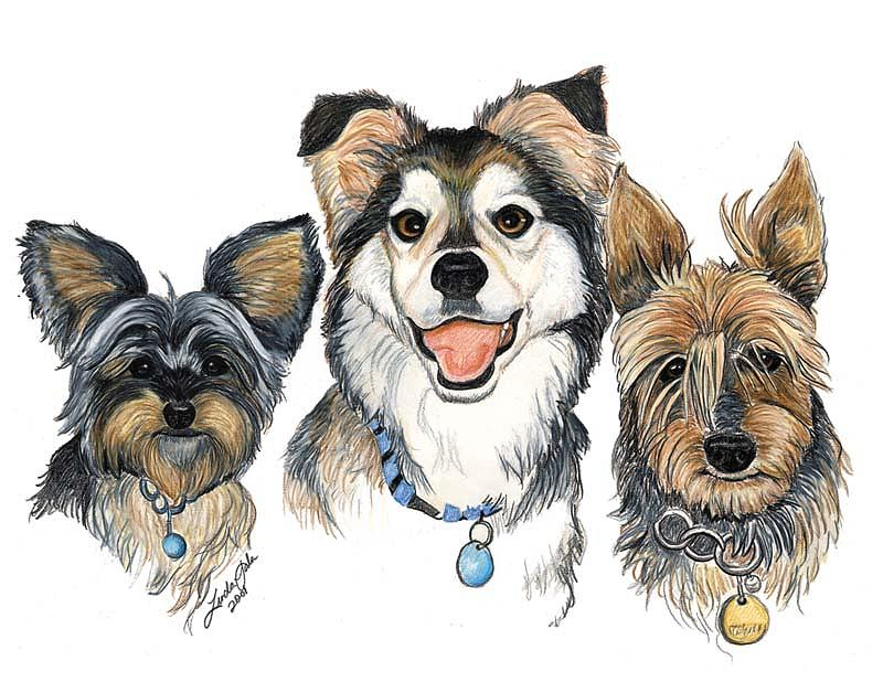Dogs Drawing - The Trio by Linda Sala