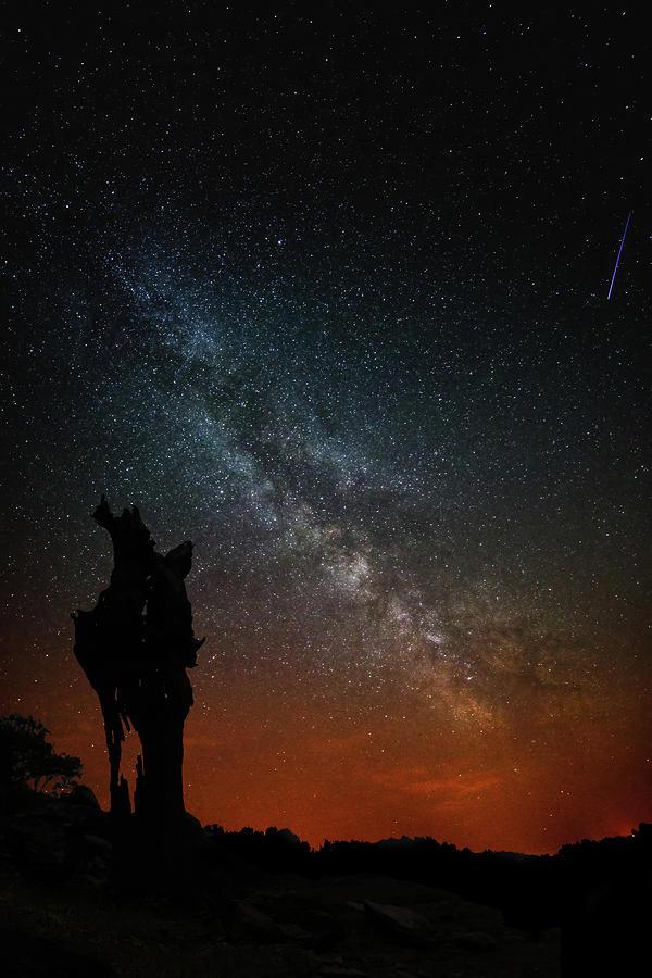 Camino De Santiago Photograph - The Trunk Of A Dead Tree, Milky Way And Meteor by Luis Vilanova