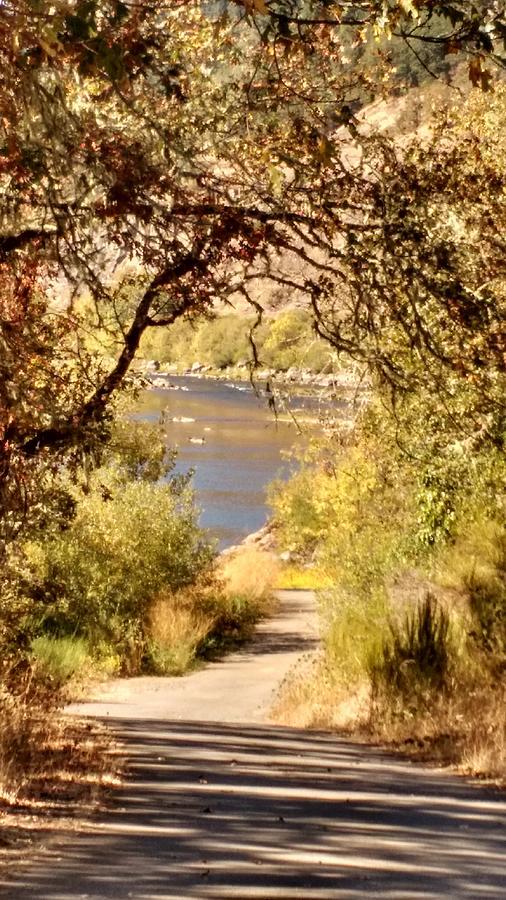 The Umpqua River at Yellow Creek by Liz Snyder