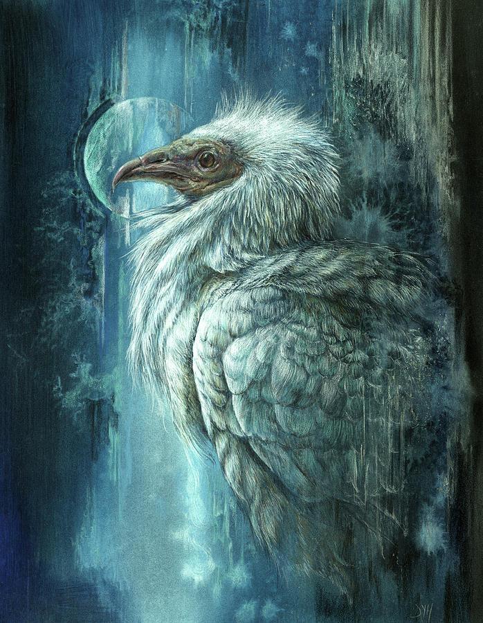 The Vanishing Vulture by D Y Hide