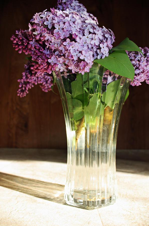 Flowers Photograph - The Vase by Becca Brann